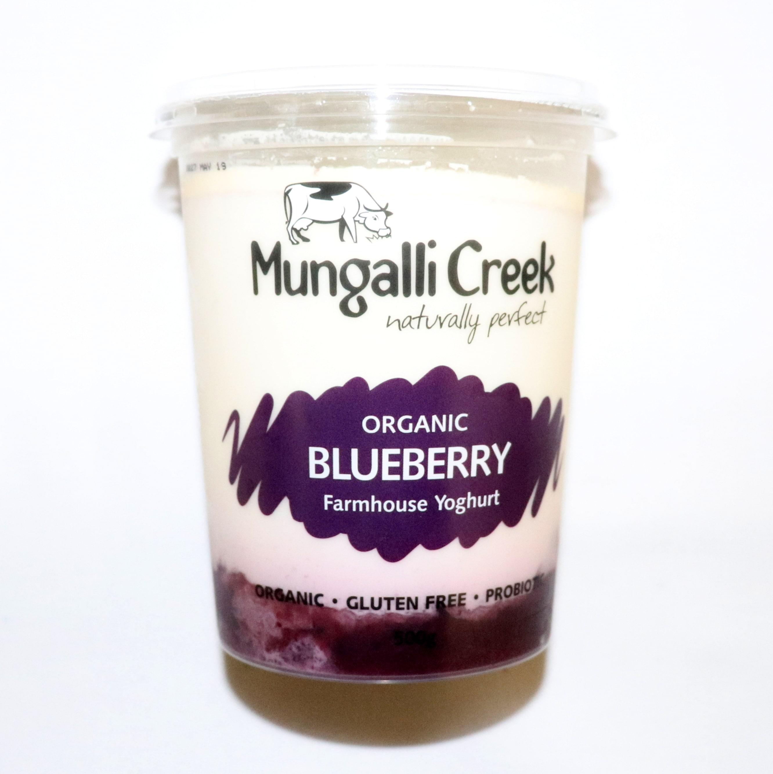 Yoghurt – Blueberry 500g